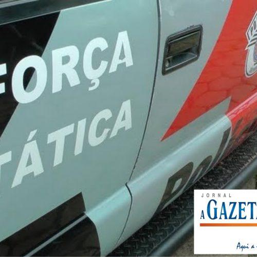 Força Tática localiza caminhão roubado, munições e diversas placas de veículos em sítio na Lagoinha