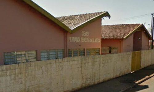 Ladrões invadem e danificam Cemei no bairro Zequinha Amêndola