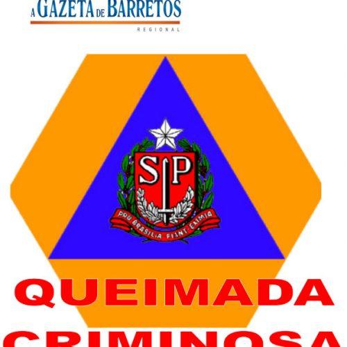 Queimada Criminosa no Antigo patio da FEPASA no bairro Nogueira