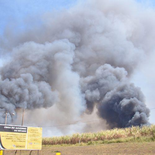 Volume de queimadas em Barretos preocupou autoridades do setor