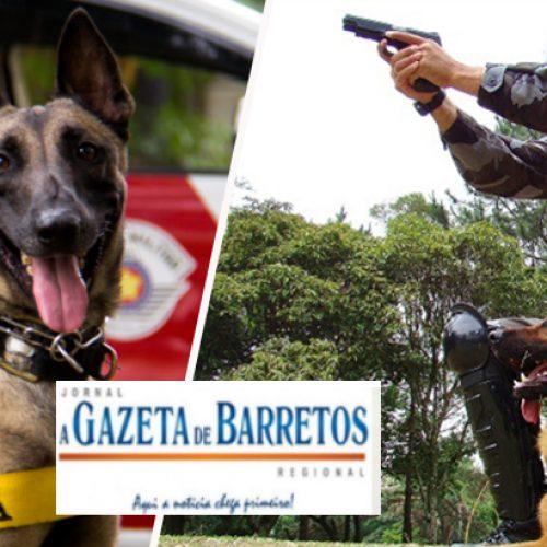 Equipe do Canil apreende menor pelo crime de tráfico de drogas no bairro Caiçara