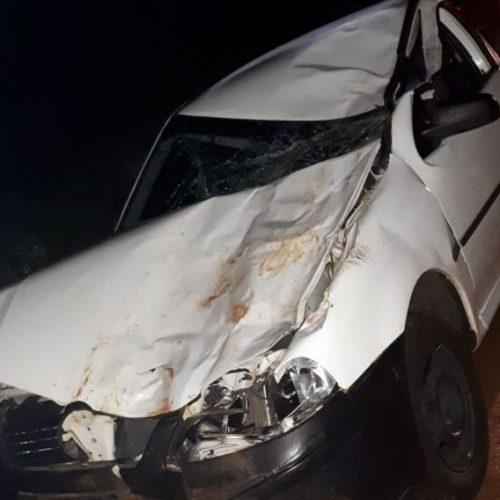 REGIÃO: Carro bate em búfalo e duas pessoas ficam feridas