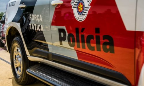 REGIÃO: Ladrões levam armas, TVs e carro de empresário