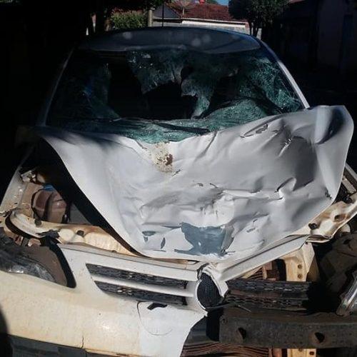 REGIÃO: Jovem fica ferido ao atropelar cavalo em rodovia de Castilho
