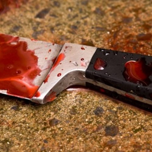 BARRETOS: Mulher é atingida por golpes de faca na cabeça em bar no bairro Jockey Clube