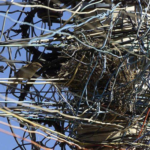 """BARRETOS: Administradora constata """"gato"""" em sua rede de energia elétrica e recebe conta de mais de R$1.700.00"""