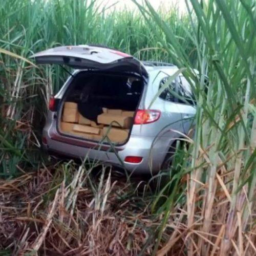 GUAÍRA: Polícia apreende mais de 700 kg de maconha
