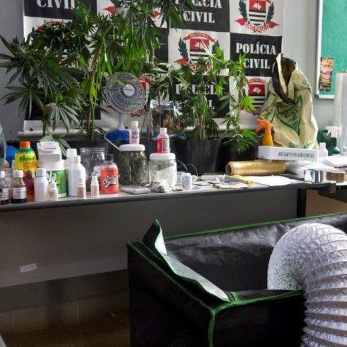 REGIÃO: Polícia Civil estoura laboratório de 'supermaconha'