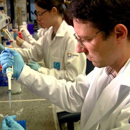 Saúde: Vacina contra o câncer de pele desenvolvida no Brasil é testada com sucesso em cobaias