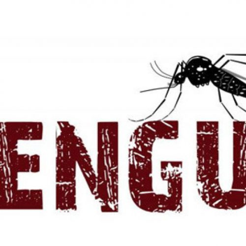 BARRETOS: Mulher pode ter falecido em decorrência da Dengue