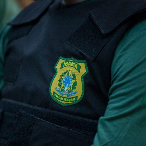 CAÇA: Projeto de Lei que proíbe a caça no Estado de SP é sancionado