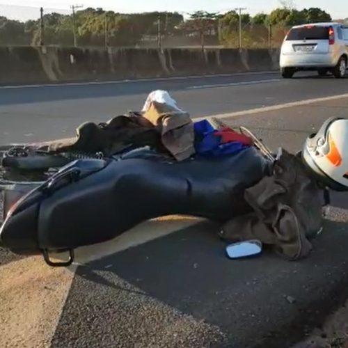 REGIÃO: Motociclista morre após atropelar cavalo na Rodovia