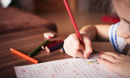 EDUCAÇÃO: Suporte carinhoso faz toda a diferença na aprendizagem