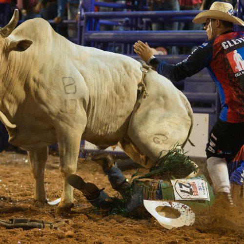 BARRETOS: Peão do Paraná é pisoteado por touro na abertura da Liga Nacional