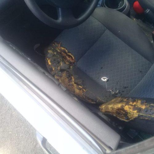 REGIÃO: Polícia procura suspeito de atear fogo na ex-namorada dentro do carro