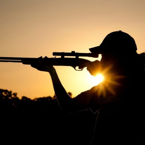 BARRETOS: Comerciante e pescador são detidos por caça ilegal e maus tratos a animais
