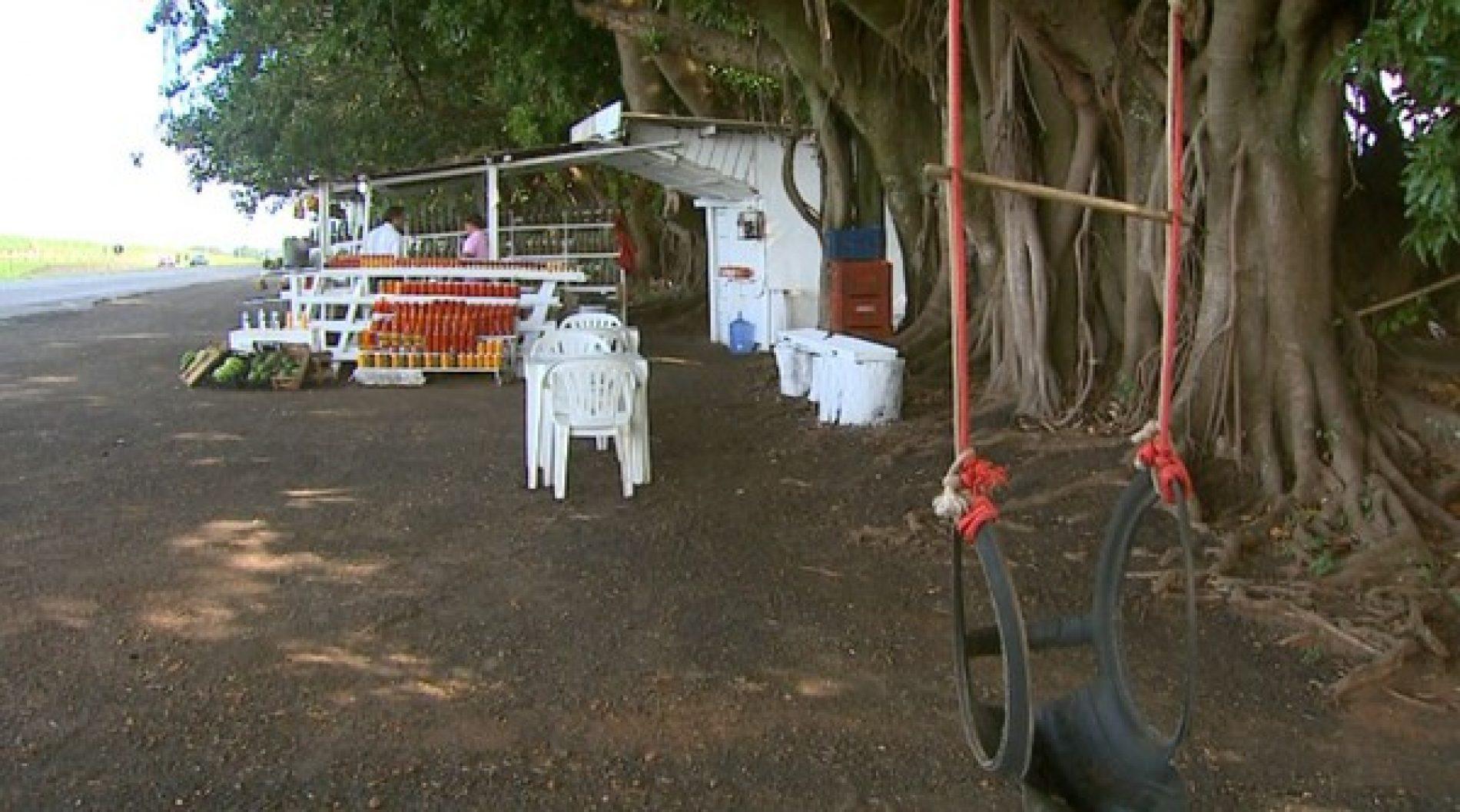REGIÃO: Concessionária pede saída de barracas de frutas que funcionam há 50 anos ao lado de rodovia