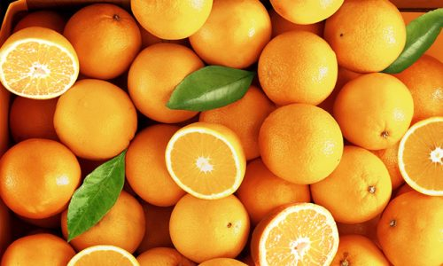 BARRETOS: Indivíduos fogem e abandonam bicicletas depois de serem flagrados furtando laranjas