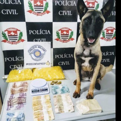 REGIÃO: Idosa é presa por tráfico durante operação contra o crime organizado