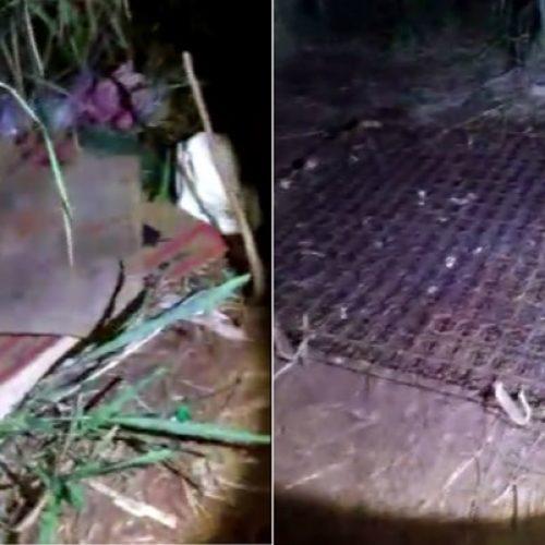 REGIÃO: Suspeito de 'maturar' e revender carne podre obtém liberdade provisória