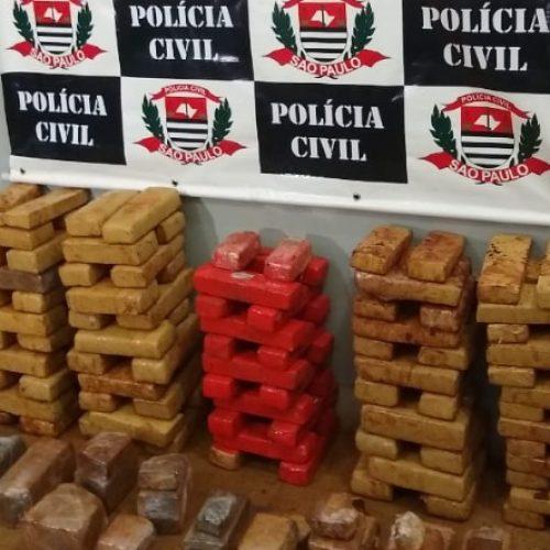 REGIÃO: Polícia Civil apreende 100 kg de maconha
