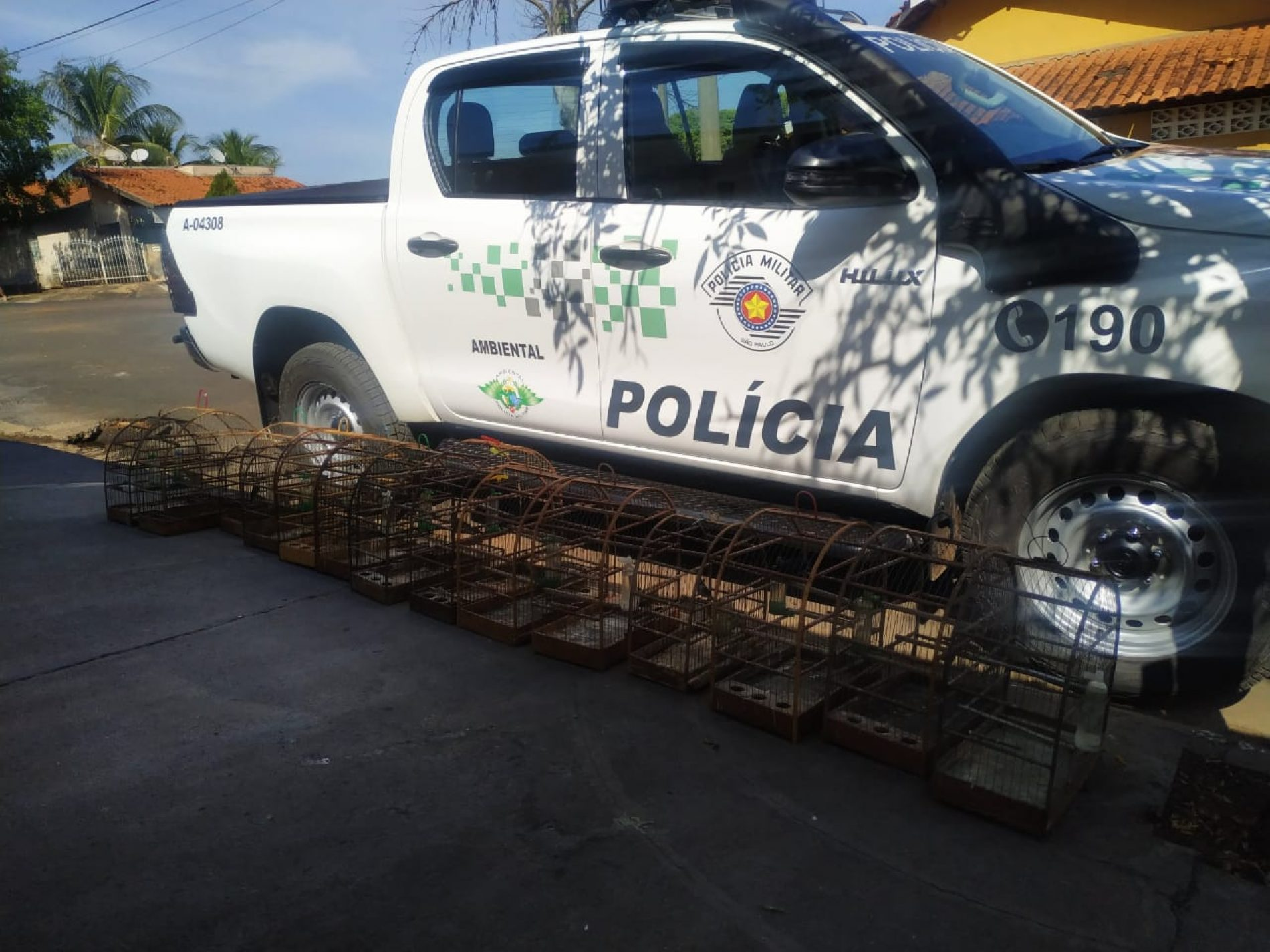 BARRETOS: Polícia Ambiental localiza aves em cativeiro e aplica multa de mais de 11 mil reais