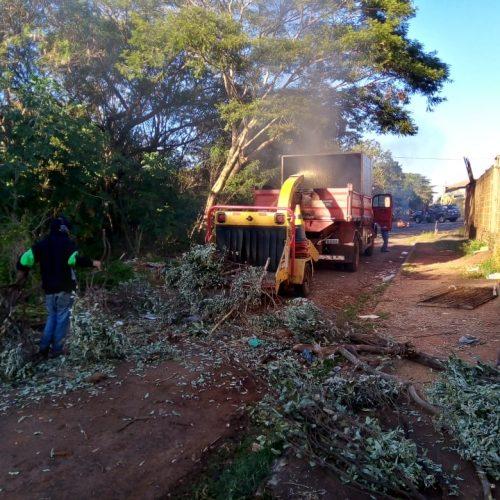 BARRETOS: Mutirão de limpeza na área verde próxima ao Zequinha Amêndola
