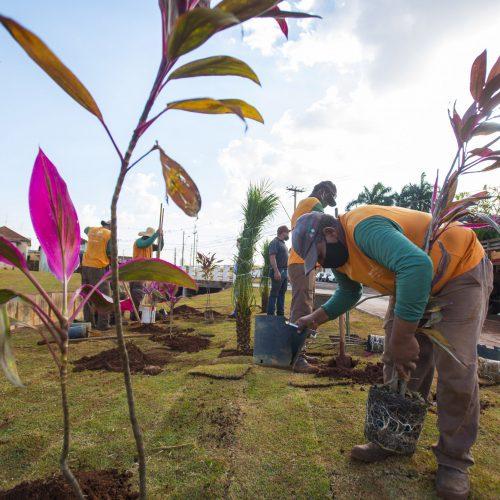 BARRETOS: Fundo de Vale recebe projeto paisagístico e plantio de árvores