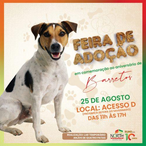 BARRETOS: Feirinha Pet do North Shopping comemora mais de uma centena de adoções com edição no feriado do dia 25