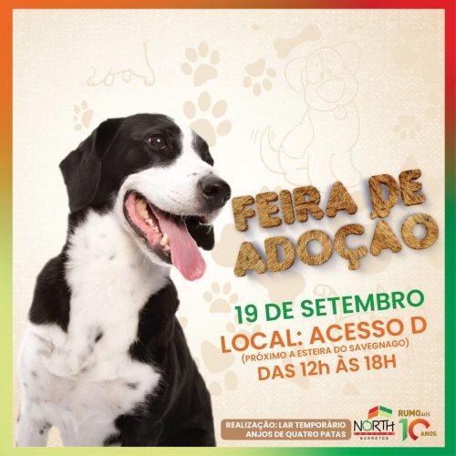 BARRETOS: Acontece neste sábado a Feira de Adoção de pets no North Shopping