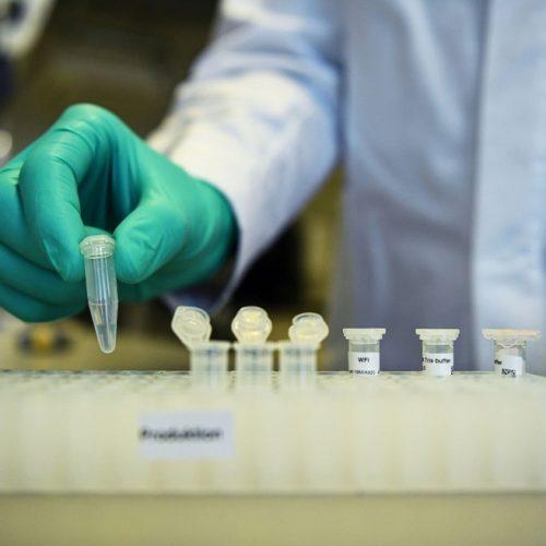 Primeiras aprovações de vacina para Covid-19 podem ser concedidas até o fim de 2020, diz regulador alemão