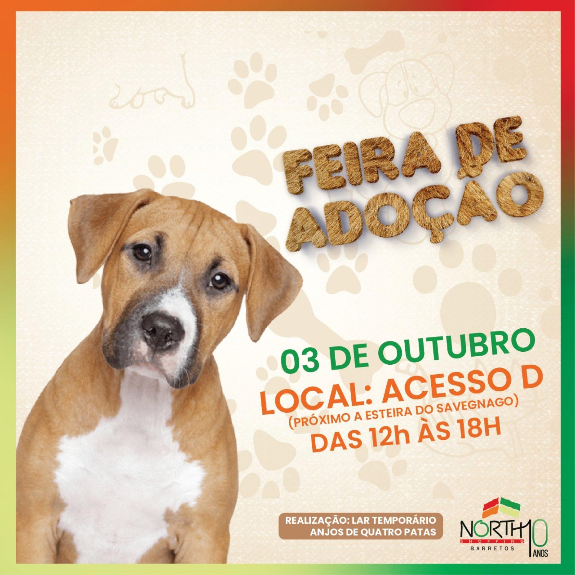 BARRETOS: Sábado terá feira de adoção de pets no North Shopping