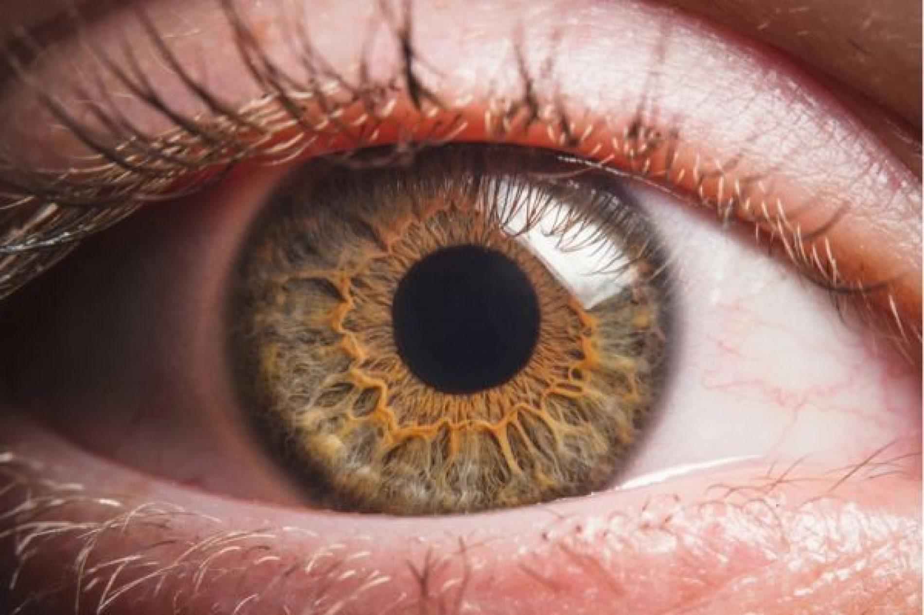 DIA MUNDIAL DO DIABETES: se não tratada corretamente, doença pode causar cegueira