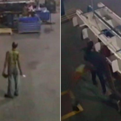REGIÃO: Homem invade empresa e mata cachorro a facadas