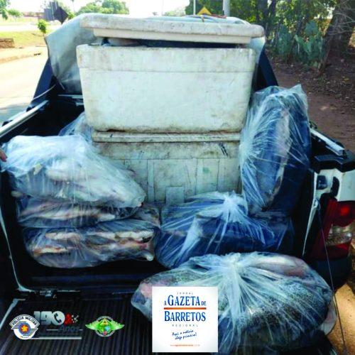 COLÔMBIA: Polícia Ambiental aprende mais 279 kg de Peixes