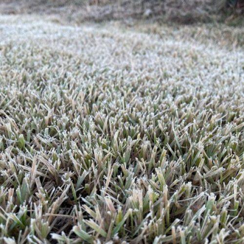 Barretos pode ter temperaturas de até 1°C e neblina em rodovias nesta quinta-feira